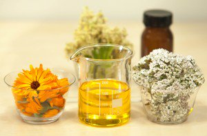 From Coconut Oil to Noni The Powerful Ingredients in Your Skincare Products - oils flowers